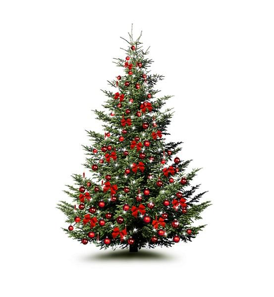 Am Weihnachtsbaum ein bayrisches Weihnachtsgedicht: Die Zeit heißt Weihnachten