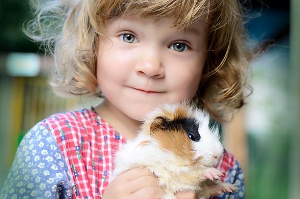 Wenn es darum geht, über die richtigen Haustiere für Kinder nachzudenken, sollten Sie als Eltern in jedem Fall einmal innehalten.(#01)