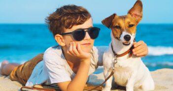 Das Kind möcht so gerne ein Haustier: ist das möglich?