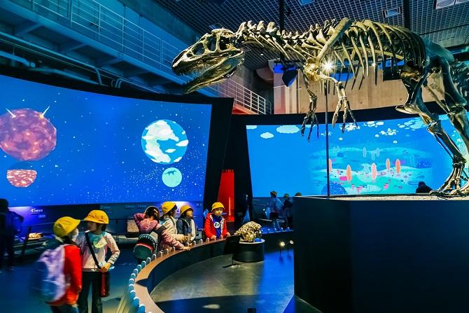 Dinosaurier üben ebenfalls eine große Faszination auf Kinder aus – auch wenn sie meist mit Fabelwesen wie Einhörnern und Drachen in einen Topf geworfen werden. Auch hier lässt sich das Interesse des Kindes von einem bestimmten Gegenstand – dem eigenen Gummi-Dinosaurier – auf ein weites Feld lenken, nämlich der Urzeit und der biologischen Entwicklung de Arten.(#02)