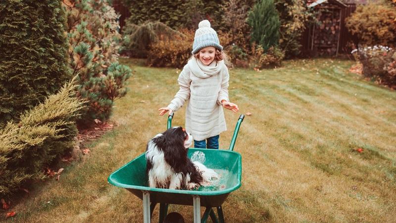 Der Stoff wird in Lernpakete eingeteilt und für jedes fertige Paket (also im Kopf gespeicherter Stoff) gibt es eine Belohnung. Eine Pause, um mit dem Hund rauszugehen, sich mit Freunden zu treffen oder einfach mal nichts zu tun. (#03)