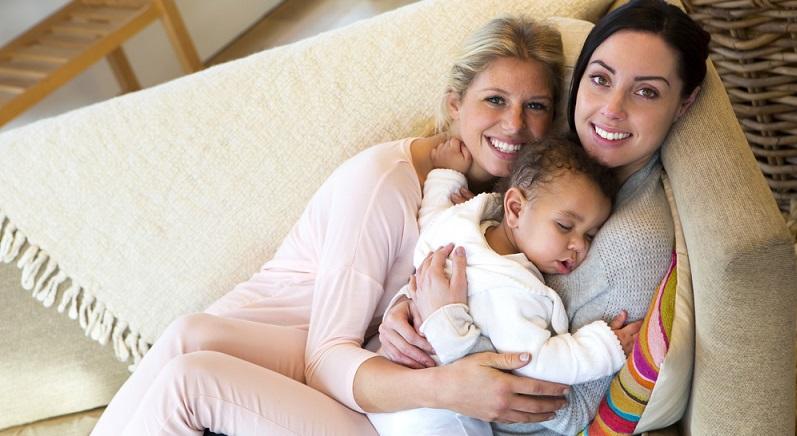 Selbst wenn eine Frau eine befruchtete Eizelle für eine Lesbe und ihre Partnerin austrägt, die von dieser anderen Frau stammt, ist sie rechtlich gesehen die Mutter des Kindes.(#02)