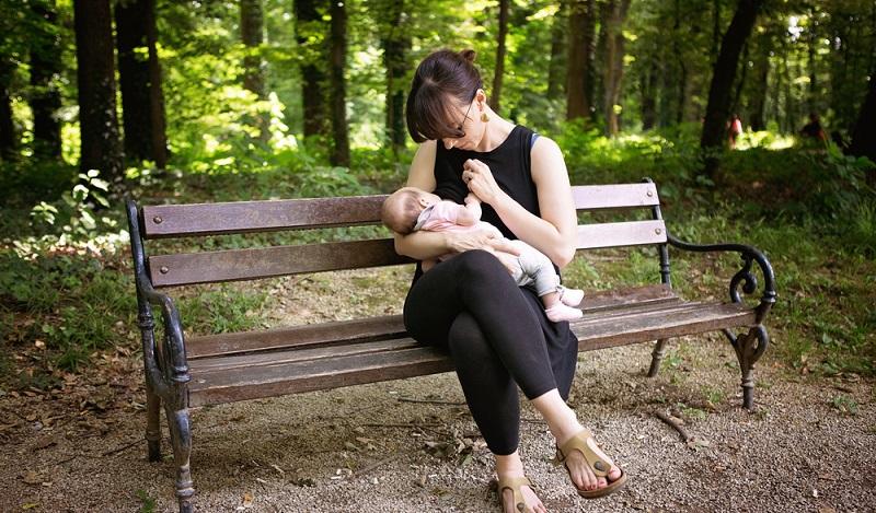 Ein besonderer Moment der Intimität mitten im Grün des Waldes. (#1)